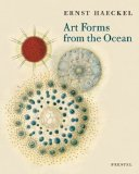 Art Forms In Ocean